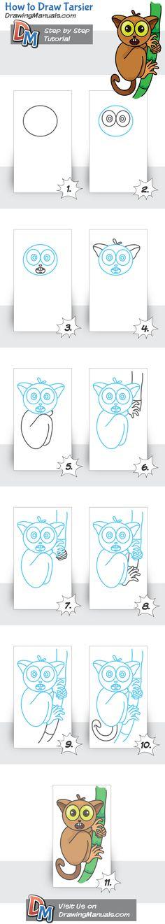 How to Draw Tarsier