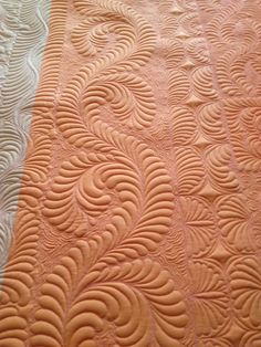 gorgeous quilting - would love to see the rest of this quilt.