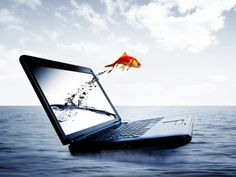 Fish Jump From Notebook HD wallpaper