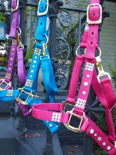 Hey, I found this really awesome Etsy listing at https://www.etsy.com/listing/166748182/bedazzled-horse-halter