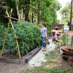 Organic gardening in urban areas
