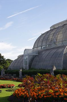 Parterre - Kew Gardens, London