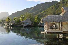 Intercontinental Resort & Spa Moorea - Moorea - Polynésie