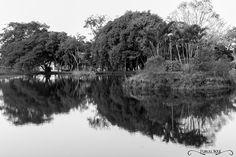Projeto 365 Inspirações - FOTO 35  #365inspiracoes #reflexo #reflection