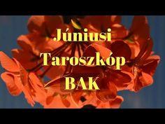 (7) BAK Taroszkóp 2017 JÚNIUS - YouTube
