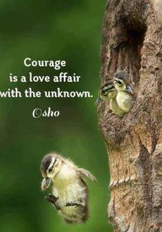 El coraje es tener un amorío con lo desconocido