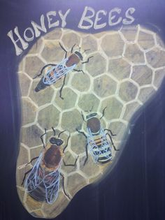 Madison Waldorf School Grade 5 Botany Block Look at the beautiful Honey Bees!