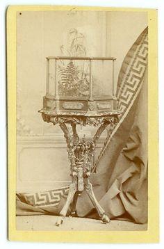 Victorian CDV Blake Gifford Carte De Visite