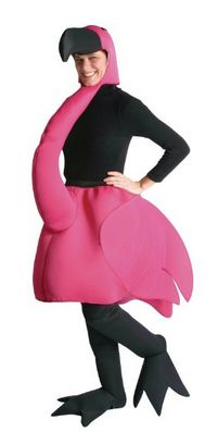 Rasta Imposta Flamingo Costume, Pink, One Size: This is the Halloween costume or party costume for the person who really wants to be different! Costume Includes Flamingo Body with Head and Neck. Also includes of full length leggings with feet!