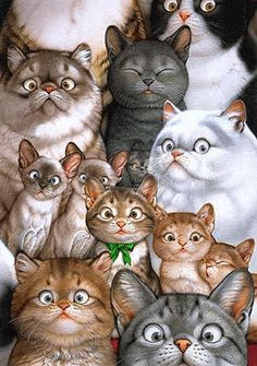 Beautiful Eyes (hermosos ojos) - Many Cats Illustration by Makoto Muramatsu I Love Cats, Crazy Cats, Cool Cats, Image Chat, Photo Chat, All About Cats, Here Kitty Kitty, Kitty Cats, Siamese Cat
