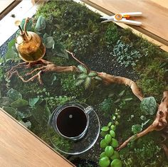 """5,812 Likes, 83 Comments - The Sill (@thesill) on Instagram: """"Coffee table #goal ✨✨✨ via @botanygeek"""""""