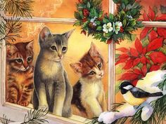 Christmas cats in window
