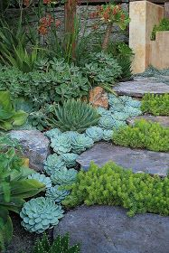 """""""Em terrenos íngremes, as escadas são fundamentais, combinações de rochas com suculentas são charmosas e modernas e quebram o visual s..."""