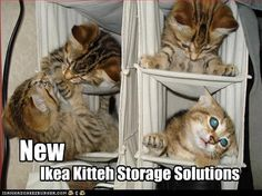 Ikea kitteh storage solutions