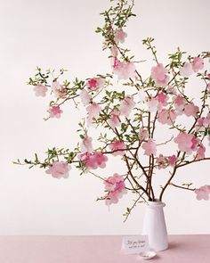 Cherry blossom escort card display