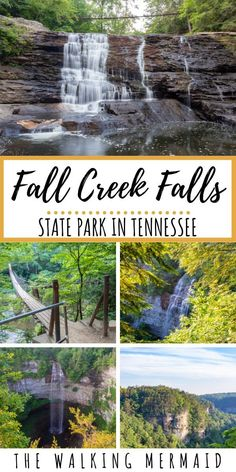 Fall Creek Falls State Park offers a wide range of outdoor activities for you and your family. From - Fall Creek Falls State Park in Tennessee is home to many gorgeous waterfalls, creeks, cascades, and - Weekend Camping Trip, Camping And Hiking, Hiking Trails, Camping Ideas, Camping Hacks, Camping Essentials, Camping Knife, Road Trip, Hiking Food