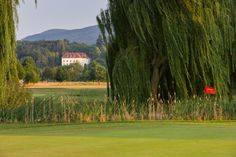 Aussicht auf Schloß Ernegg Location, Golf Courses, Environment, Marriage Anniversary, Newlyweds, Places