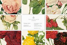 Floral business cards... these are gorgeous!...I would probably use them for personal use, though