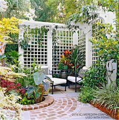 Privacy Trellis, Patio Trellis, Arbors Trellis, Wood Trellis, Diy Trellis, Backyard Privacy, Backyard Fences, Backyard Landscaping, Privacy Screens