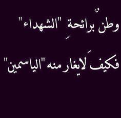 .@yasmeenmoussa