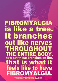 Fibromyalgia is like a tree.