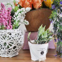 Wreszcie nadeszła wiosna a wraz z nią kwiaty. Aby jeszcze bardziej ubarwić Wasz ogród lub dom oferujemy nowe osłonki na doniczki oraz ozdobne kosze. Dom, Planter Pots, Vogue, En Vogue