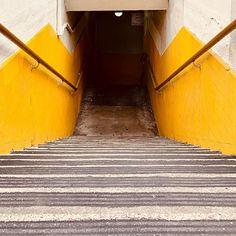 #cinqmars #streetphotography #sfo #stairs #orange Street Photography, Stairs, Orange, Rugs, Home Decor, Farmhouse Rugs, Stairway, Decoration Home, Room Decor