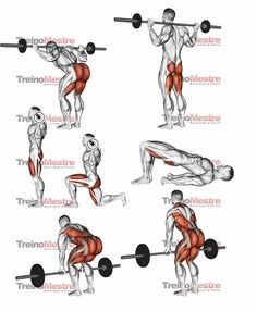 Upper-back weight exercises Bodybuilding Training, Bodybuilding Workouts, Fitness Workouts, Weight Training Workouts, Gym Workout Chart, Gym Workout Videos, Fitness Studio Training, Gym Training, Leg And Glute Workout