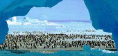 Bookaport - Antarctica.  Classic Antarctica: Antarctic & South Shetland Islands