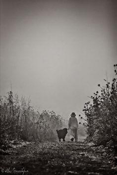 Into the Wild - Alex Greenshpun