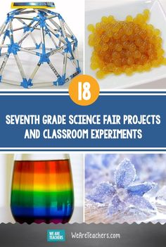 Need a science fair idea? Want to engage your middle school students? Check out these totally cool seventh grade science experiments! 7th Grade Science Projects, Science Lessons, Science Activities, Science Experiments, Seventh Grade, Lesson Plans, Middle School, Homeschool, Teaching