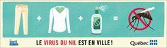 MSSS - Documentation - Campagnes d'information - Virus du Nil