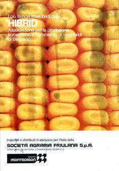 Pagina pubblicitaria - Società agraria friulana/Montedison  Progetto grafico di Giuseppe Colombo.