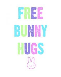 Free Bunny Hugs East