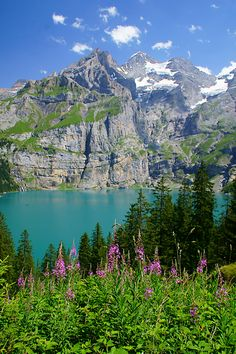 Oeschinensee is a Mountain-Lake above the village Kandersteg, Bern, Switzerland Copyright: Roland Kuettel
