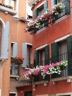 Gorgeous window boxes in Venice via Fashion-isha