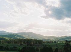 pippin-hill-farm-vineyard-wedding Vineyard Wedding, Blue Ridge, Countryside, Mountains, Bridal, Nature, Travel, Viajes, Traveling
