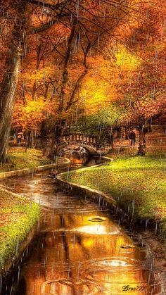 Не бойтесь влюбляться в дождливую осень,  Она вам заботливо пледы подбросит,  Из листьев осенних подарит перины,  Чтоб ночи всегда были жарки и длинны.  Не бойтесь дождей, ураганов и ветров,  Они принесут листопад комплиментов,  И вихрем любовным вас в танце закружат,  Чтоб стало теплей -это осенью нужно!  Не бойтесь осенних дождей многоцветье,  Не слушайте злых разговоров и сплетен.  Живите сегодня, сейчас и влюбляйтесь,  И эту любовь сохранить постарайтесь.