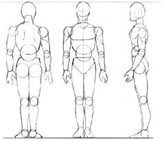 Pour éviter les défauts de proportion, et arriver à dessiner facilement les mouvements, il vaut mieux (je dirai même IL FAUT ) décomposer le corps en blocs.  Voici donc des modèles pratiques...