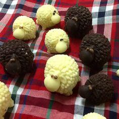 Ovelhinhas de chocolate