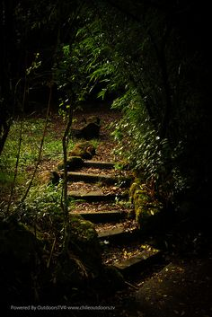 2012  Cerro Nielol - Temuco by OUTDOORSTV, via Flickr