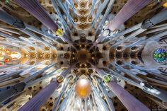 Inside La Sagrada Familia, Barcelona, Spain (reminds me of a kaliedescope)