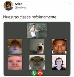 New Funny Memes, Funny Spanish Memes, Cute Memes, Dankest Memes, Funny Quotes, A Funny, Mexican Memes, Pokemon Special, Pinterest Memes