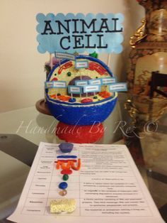 Animal Cell Project for Science class. 3d Animal Cell Project, Plant Cell Project, Cell Model Project, Cell Project Ideas, 3d Animal Cell Model, 3d Cell Model, Plant Cell Model, Biology Projects, Science Fair Projects