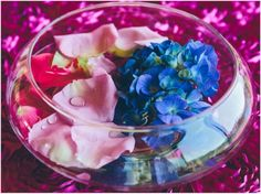 Bliss Bridal Magazine | Austin, Texas Wedding Magazine