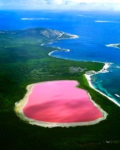 I want to go in Australia to see this lake. The Pink lake. But I don't  want to go there because I don't want to take the plan during 24 hours its to long and I'm scared :$ ahahha it's to long