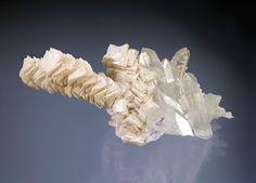 Ankerite, Ca(Fe,Mg)(CO3)2 , stacked crystals on Quartz,  Spruce Ridge, Washington, USA