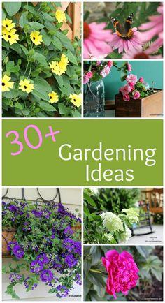 Over 30 inspiring garden tips and ideas.