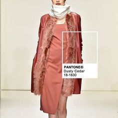 #DustyCedar spotted at @karigam_official |  by @fashionsnoops #FScolor #fw16 #PantoneTrends @pantone