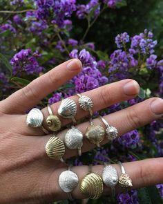 Shell rings by Kate Macindoe 🐚 www.katemacindoe.com